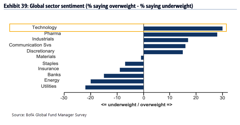 BofA fund manager overweight technology