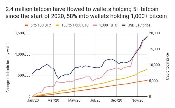 bitcoin holder size