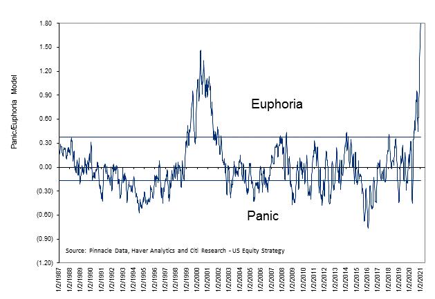 Citi panic euphoria model